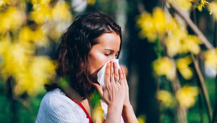 Hay fever sneeze
