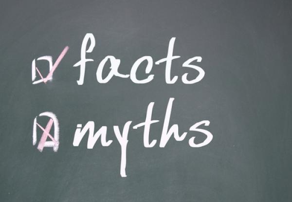 vision myths