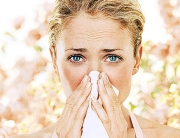 hay fever season
